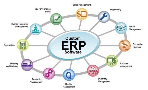 Custom ERP