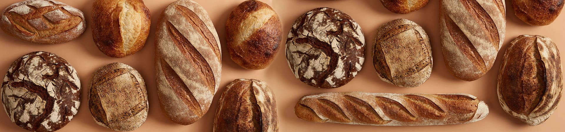 Bakery Products Manufacturing